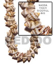 Natural Nassa Tiger Shell Sidedrill BFJ041SPS Shell Necklace Shell Beads